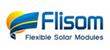 FLISOM AG (FLISOM)